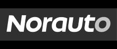Client Qualisondages logo Norauto